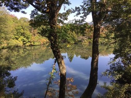 池のほとり5.jpg