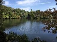 池のほとり1.jpg
