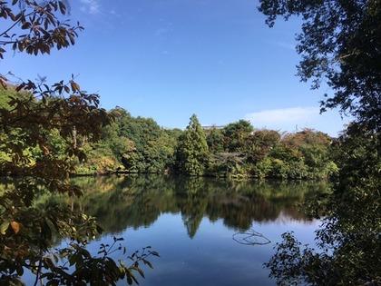 池のほとり4.jpg