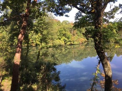 池のほとり6.jpg
